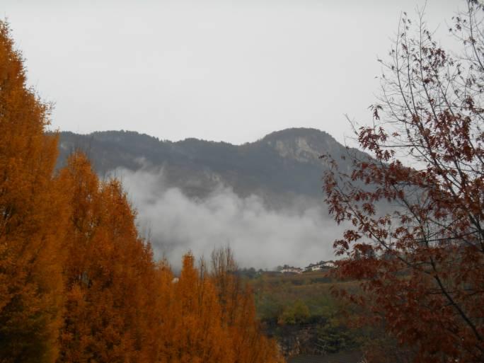 Meteo/autunno_nebbie_2.jpg