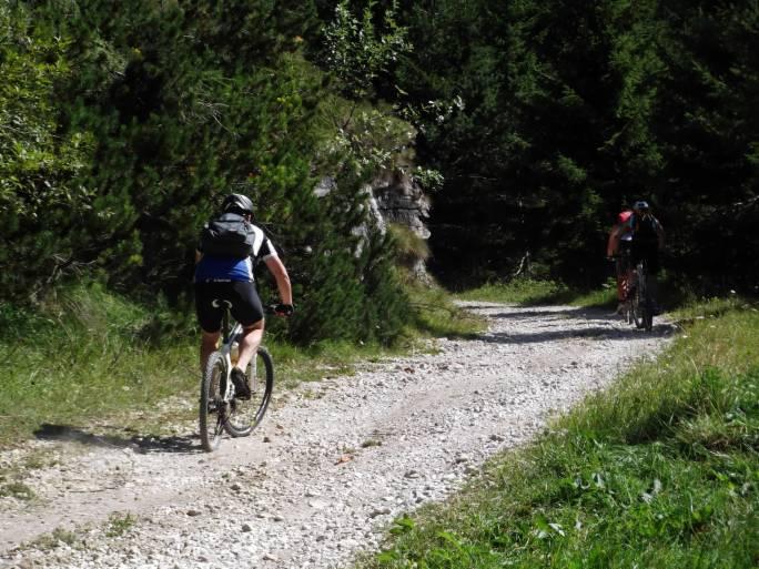 Sport/mtb_bike_mountain_2.jpg